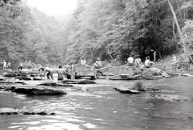 Stompin' 76 festival fans playing in the creek
